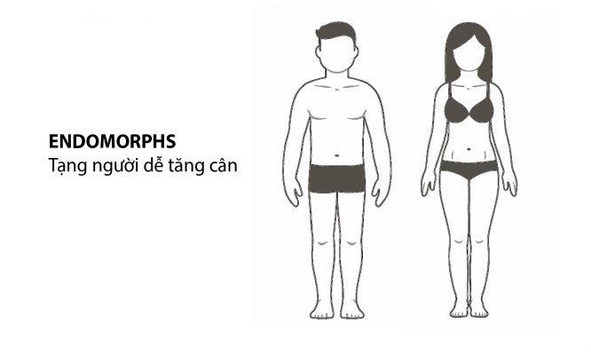 Tạng người Endomorphs (dễ tăng cân)